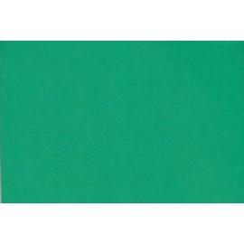 Fommy-Liscio-Verde-Vivo-cm40X60