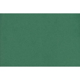 Fommy-Liscio-Verde-Muschio-cm40X60