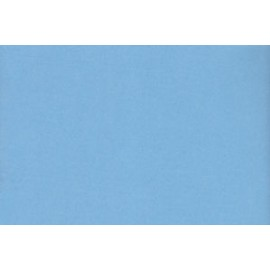 Fommy-Liscio-Azzurro-Baby-cm40X60