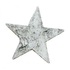 STAR PICCOLA CORTECCIA