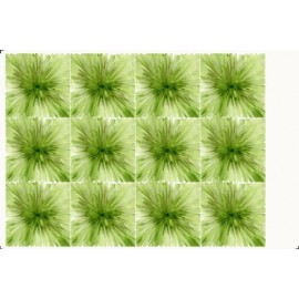 FOMMY DECO SOFT SMALL MONET VERDE SALVIA/ VERDE